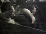 セックス_オナニー_個室の中はエロエロな世界_インターネットカフェの中で起こっている出来事_vol.007_盗撮_覗き_中村屋_02
