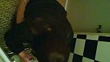 トイレ_素人_和式トイレの喫茶店店主マロンさんのコレクションvol.4_盗撮_覗き_中村屋_05