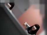 トイレ_凄腕盗撮師モンナさん!_美しい日本の未来_No.12_オールフロント2ボリュームアップ_盗撮_覗き_中村屋_07