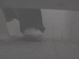 トイレ_素人_女子トイレ盗撮若い嬢編vol.12_盗撮_覗き_中村屋_04