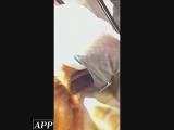 チラ_アパレル店員_ハイビジョン盗撮!ショップ店員千人斬り!胸チラ編_vol.53_盗撮_覗き_中村屋_04