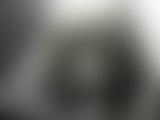 トイレ_ロシアン_世界に飛び出せ中村屋第三弾!!!_洋物覗き_厠編_vol.5_盗撮_覗き_中村屋_02