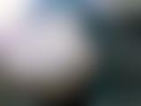 トイレ_素人_素人投稿作品_新_映画館厠盗撮_盗撮_覗き_中村屋_09