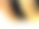 トイレ_素人_女子厠緊急事態_ハプニング大発生_若妻_人妻編ahsd03_盗撮_覗き_中村屋_04